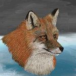 Red Fox HS1